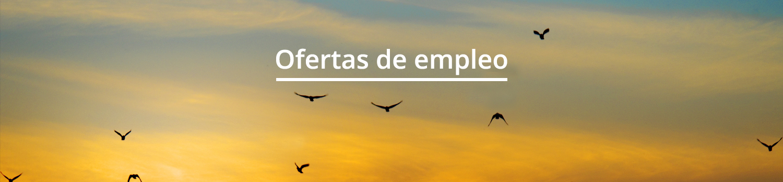 cabecera_ofertas de empleo
